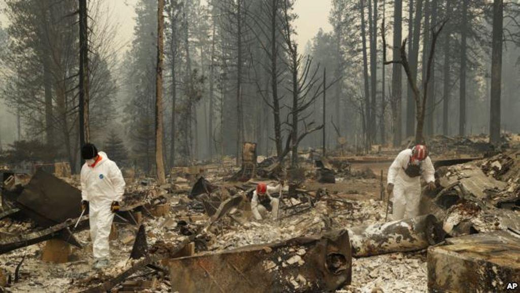 Kaliforni: Zjarret të pamëshirshme, mbi 50 të vdekur
